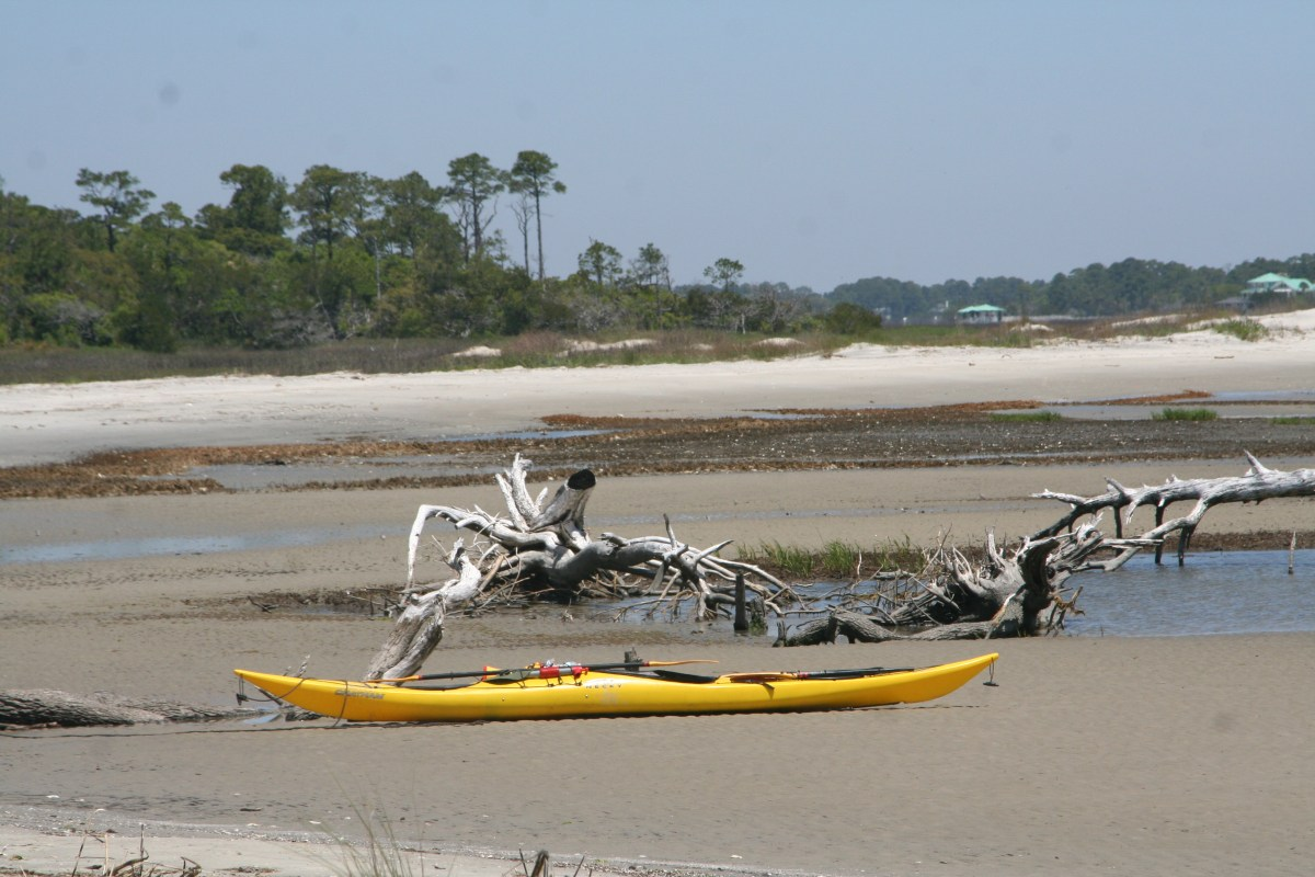 Little Tybee Island (GA) - April 2014